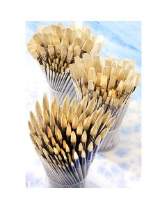 Student Short Handled Flat Hog Brush Bulk Pack. Pack of 90