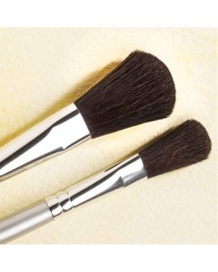 Specialist Crafts Student Oval Mop Pony Brushes