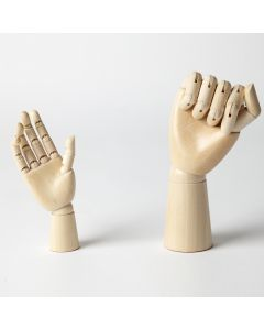 Anatomical Hands